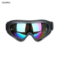 glass pipes - LM-X400 Goggles